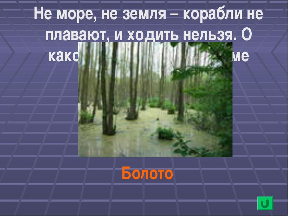 Не море, не земля – корабли не плавают, и ходить нельзя. О каком природном во...