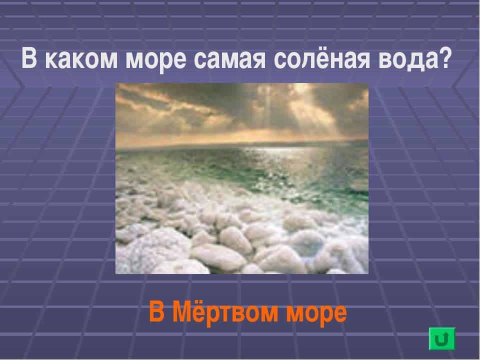 В каком море самая солёная вода? В Мёртвом море