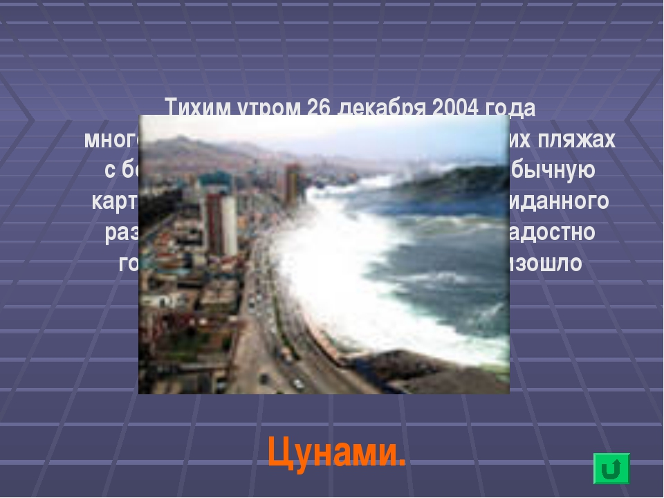 Тихим утром 26 декабря 2004 года многочисленные отдыхающие на тайских пляжах...