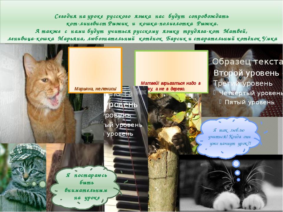 Сегодня на уроке русского языка нас будут сопровождать кот-лингвист Рыжик и к...