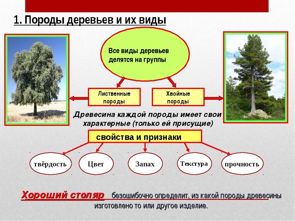 Лиственные породы Хвойные породы 1. Породы деревьев и их виды Все виды деревь...