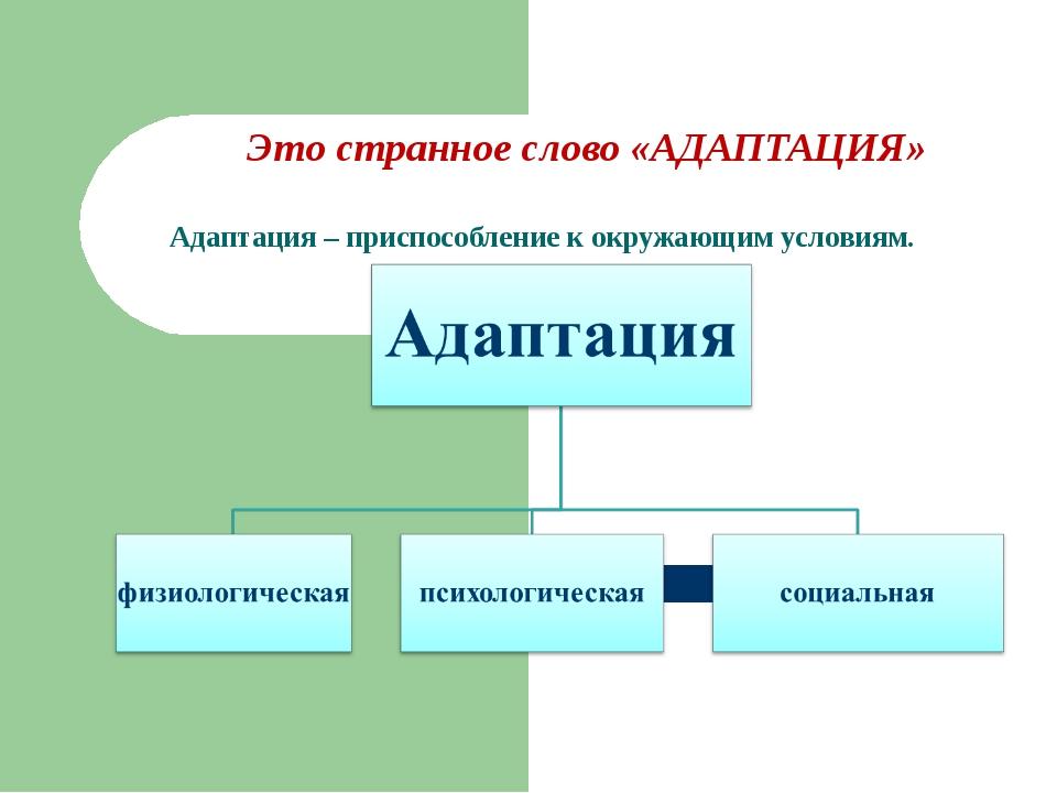 Это странное слово «АДАПТАЦИЯ» Адаптация – приспособление к окружающим услови...
