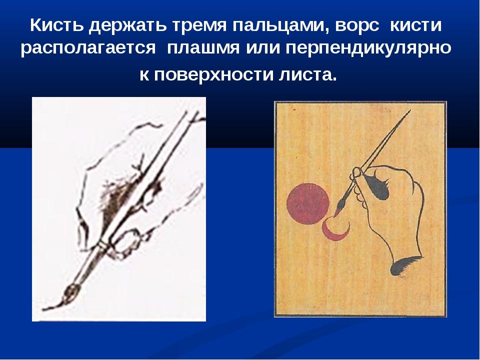 Кисть держать тремя пальцами, ворс кисти располагается плашмя или перпендикул...