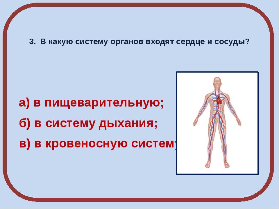 3. В какую систему органов входят сердце и сосуды? а) в пищеварительную; б)...