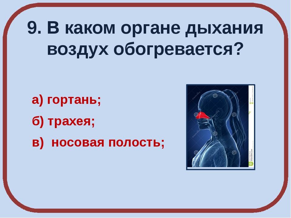 9. В каком органе дыхания воздух обогревается? а) гортань; б) трахея; в) носо...