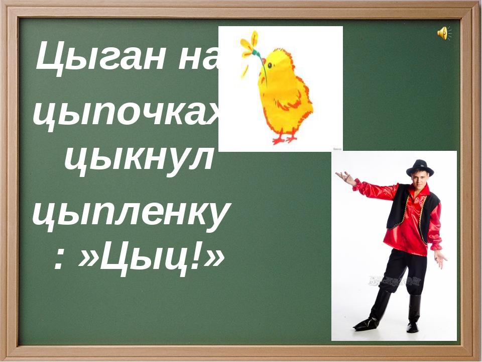 Цыган на цыпочках цыкнул цыпленку: »Цыц!»
