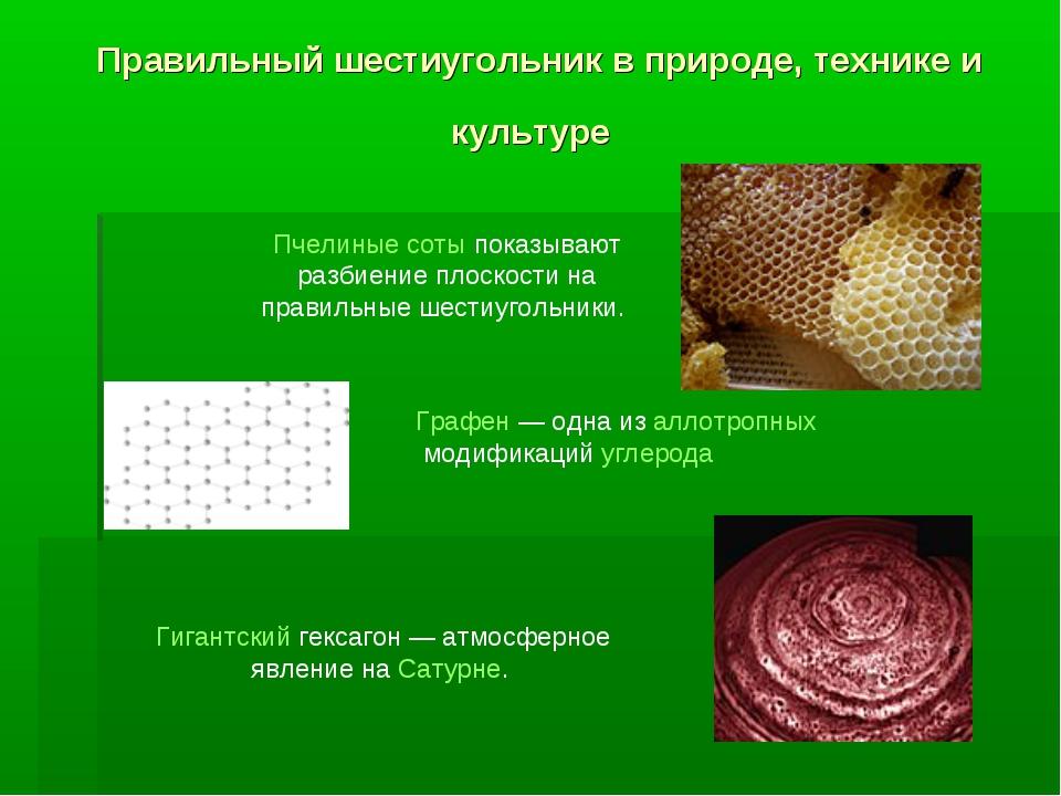 Правильный шестиугольник в природе, технике и культуре Пчелиные соты показыва...