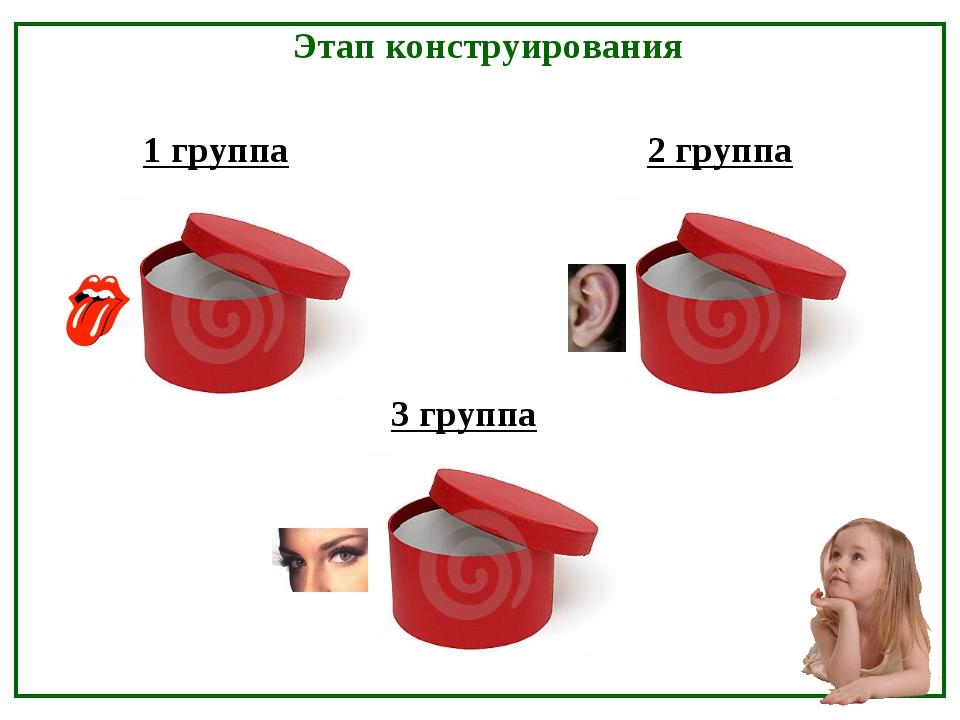 1 группа 2 группа 3 группа Этап конструирования