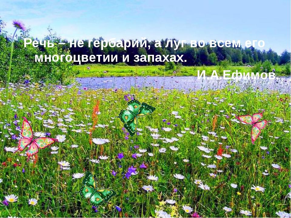 Речь – не гербарий, а луг во всем его многоцветии и запахах. И.А.Ефимов.