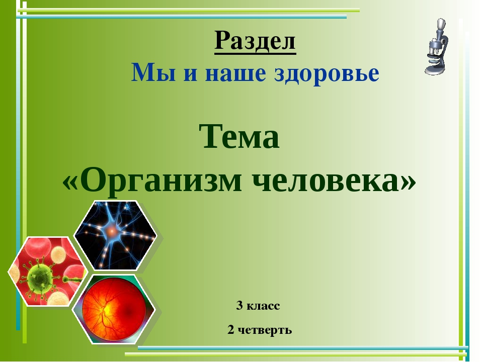Тема «Организм человека» Раздел Мы и наше здоровье 3 класс 2 четверть