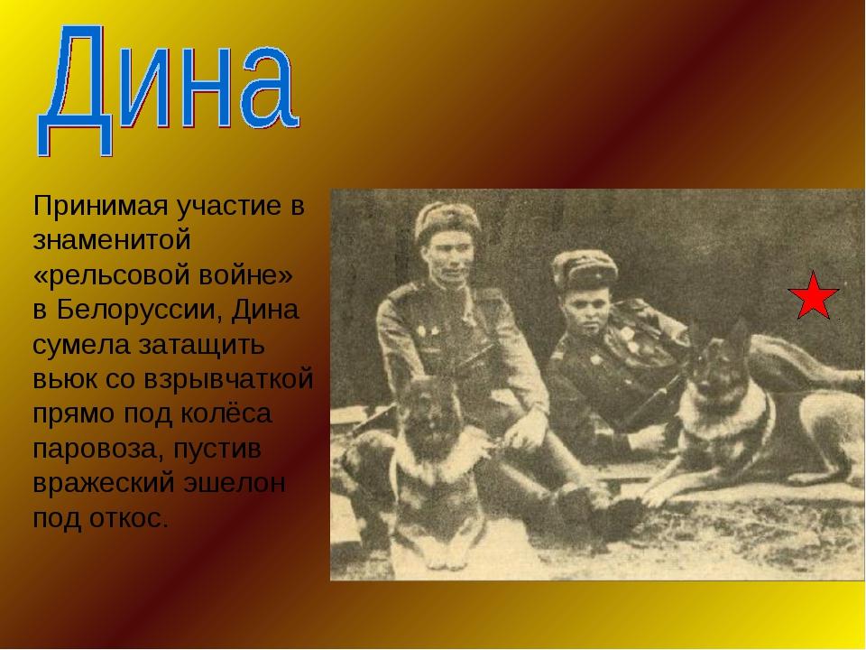 Принимая участие в знаменитой «рельсовой войне» в Белоруссии, Дина сумела зат...