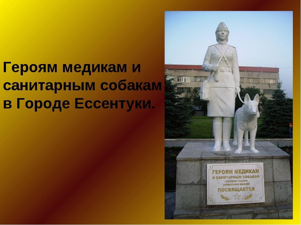 Героям медикам и санитарным собакам в Городе Ессентуки.