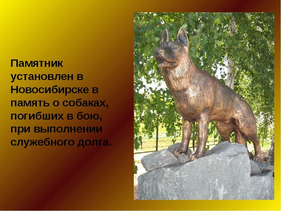 Памятник установлен в Новосибирске в память о собаках, погибших в бою, при вы...