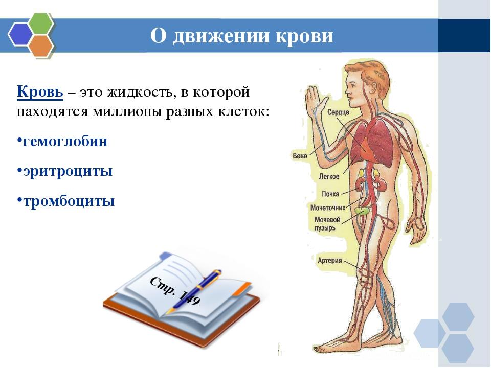 О движении крови Кровь – это жидкость, в которой находятся миллионы разных кл...