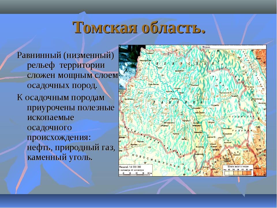 Томская область. Равнинный (низменный) рельеф территории сложен мощным слоем...