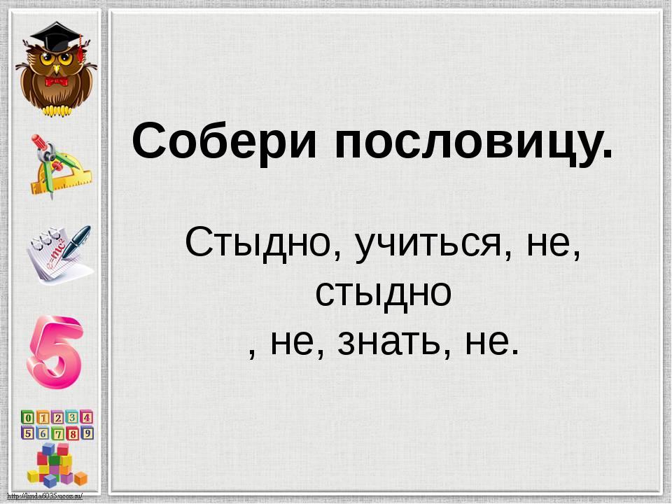 Стыдно, учиться, не, стыдно , не, знать, не. Собери пословицу.