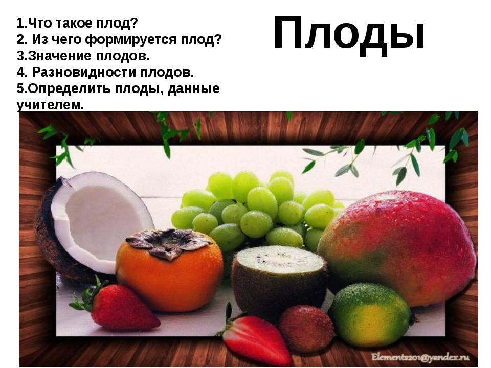 Плоды 1.Что такое плод? 2. Из чего формируется плод? 3.Значение плодов. 4. Ра...