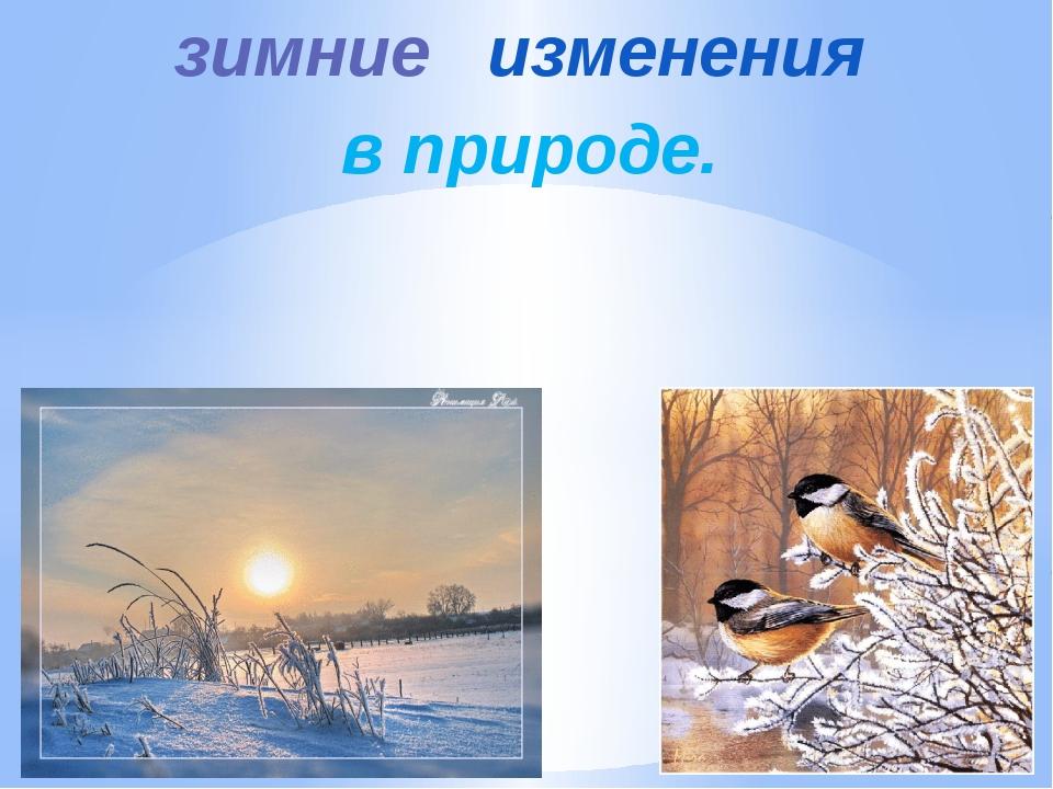 зимние изменения в природе.