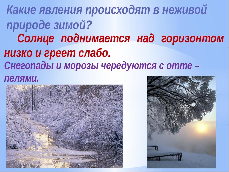 Какие явления происходят в неживой природе зимой? Солнце поднимается над гори...