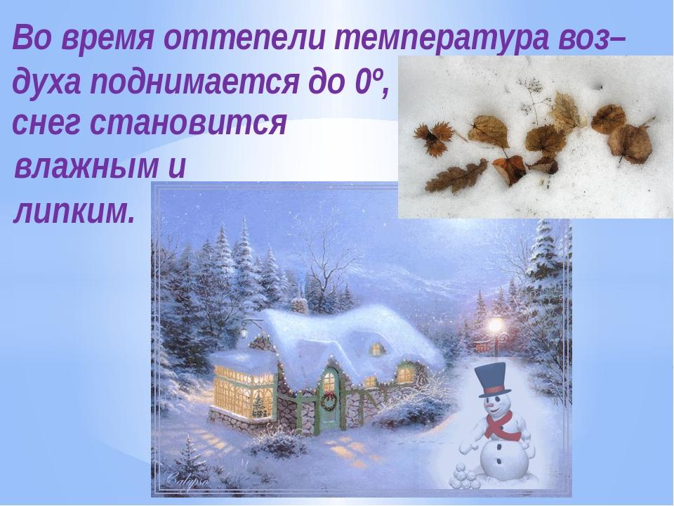 Во время оттепели температура воз–духа поднимается до 0º, снег становится вла...