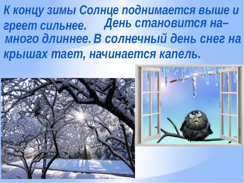 К концу зимы Солнце поднимается выше и греет сильнее. День становится на– мно...