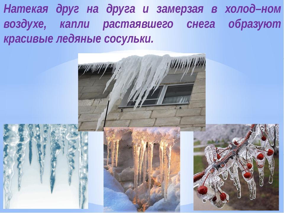 Натекая друг на друга и замерзая в холод–ном воздухе, капли растаявшего снега...