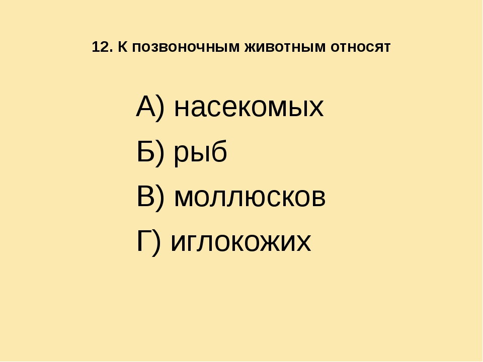 12. К позвоночным животным относят А) насекомых Б) рыб В) моллюсков Г) иглок...
