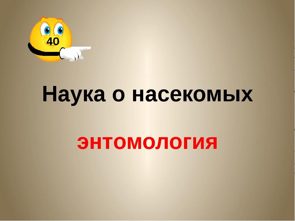 Наука о насекомых энтомология 10 40