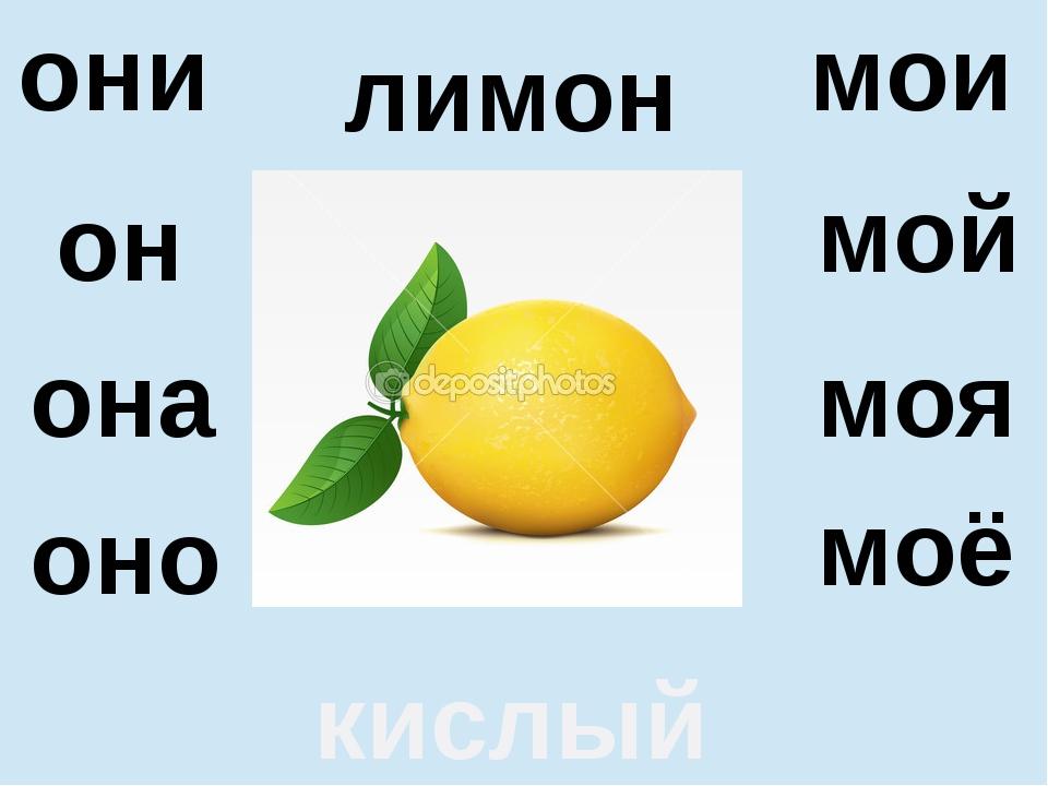 лимон кислый она оно моя моё они мои он мой