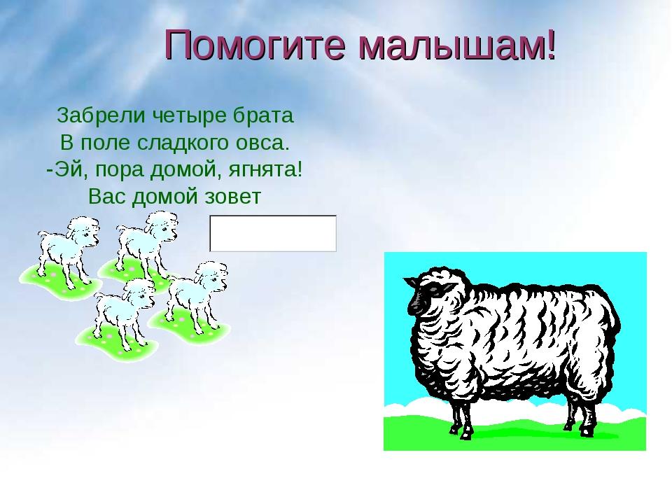 Забрели четыре брата В поле сладкого овса. -Эй, пора домой, ягнята! Вас домой...