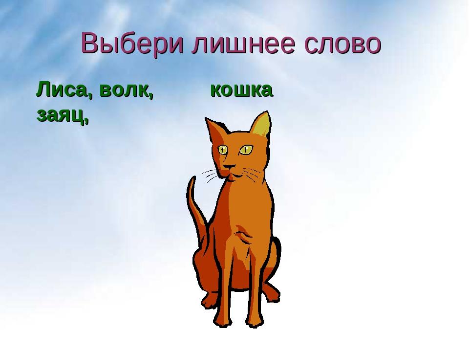 Выбери лишнее слово кошка Лиса, волк, заяц,