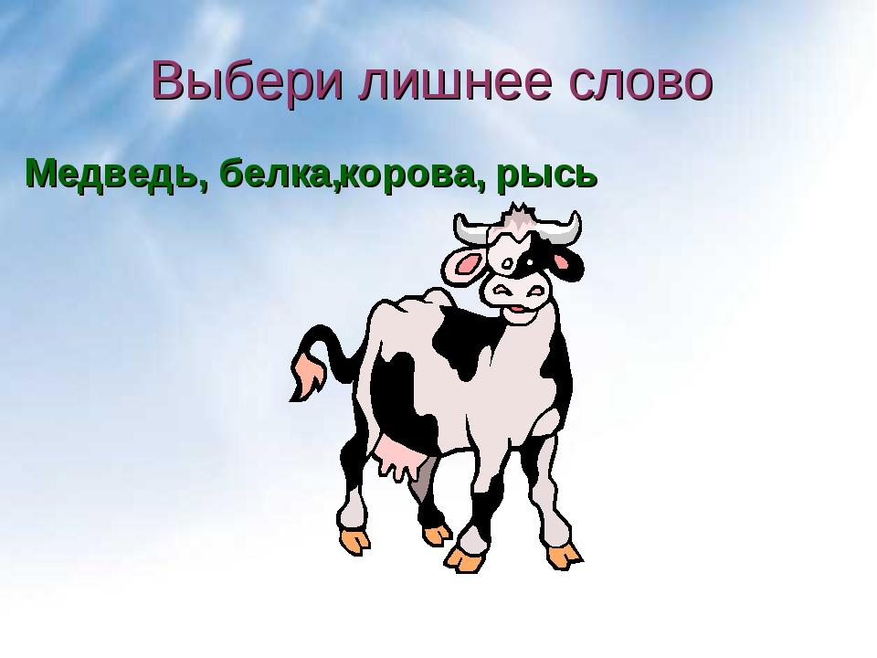 Выбери лишнее слово рысь Медведь, белка, корова,
