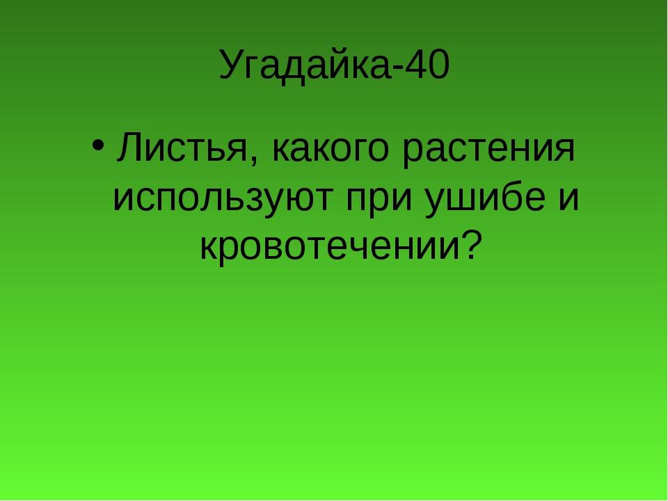 Угадайка-40 Листья, какого растения используют при ушибе и кровотечении?