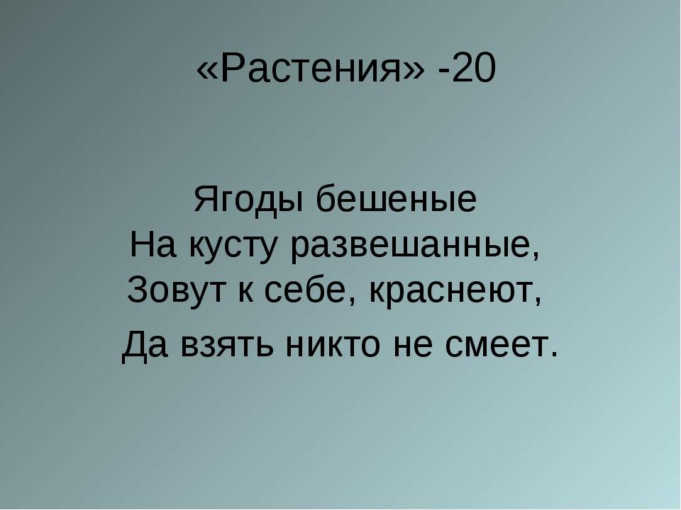 «Растения» -20 Ягоды бешеные На кусту развешанные, Зовут к себе, краснеют,...
