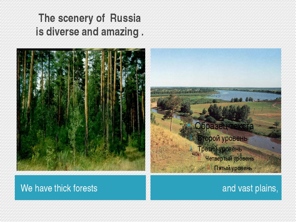 The scenery of Russia is diverse and amazing . We have thick forests and vas...
