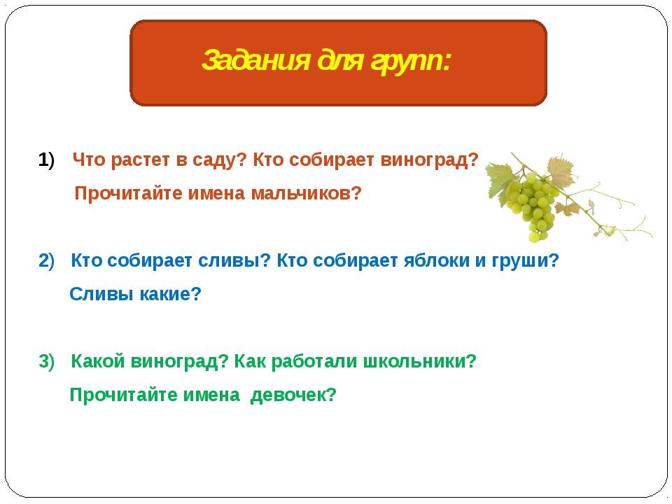 Задания для групп: Что растет в саду? Кто собирает виноград? Прочитайте имен...