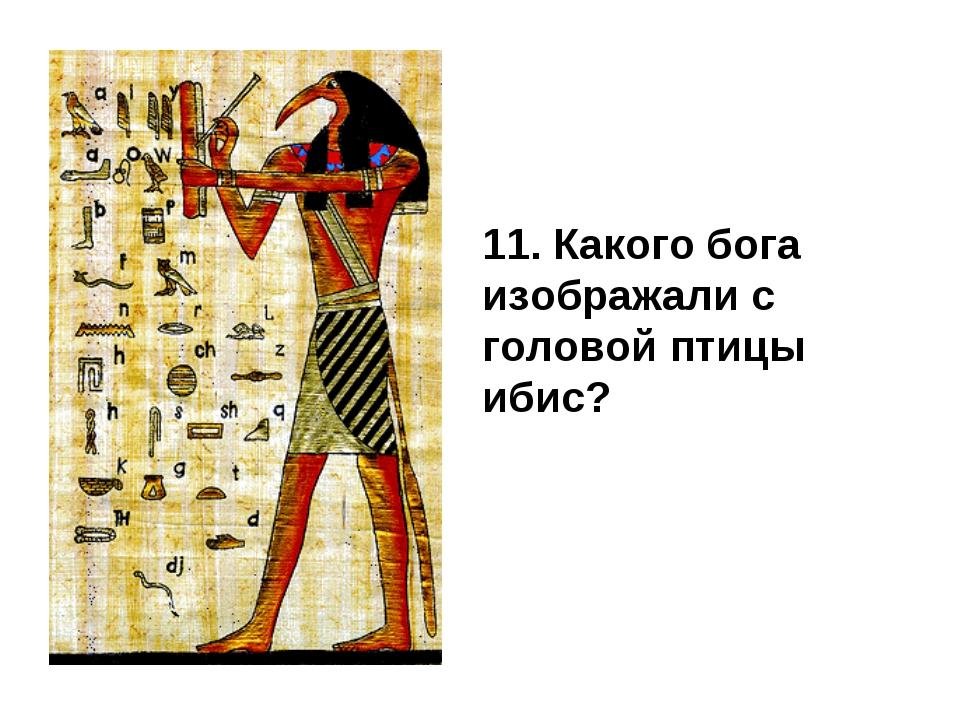 11. Какого бога изображали с головой птицы ибис?