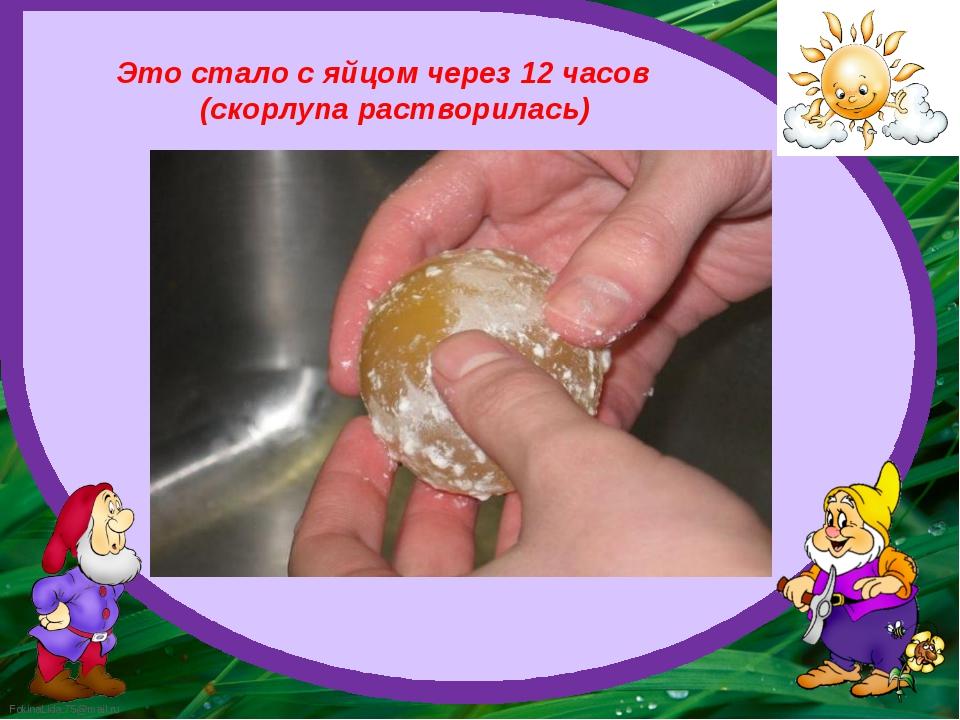 Это стало с яйцом через 12 часов (скорлупа растворилась) FokinaLida.75@mail.ru