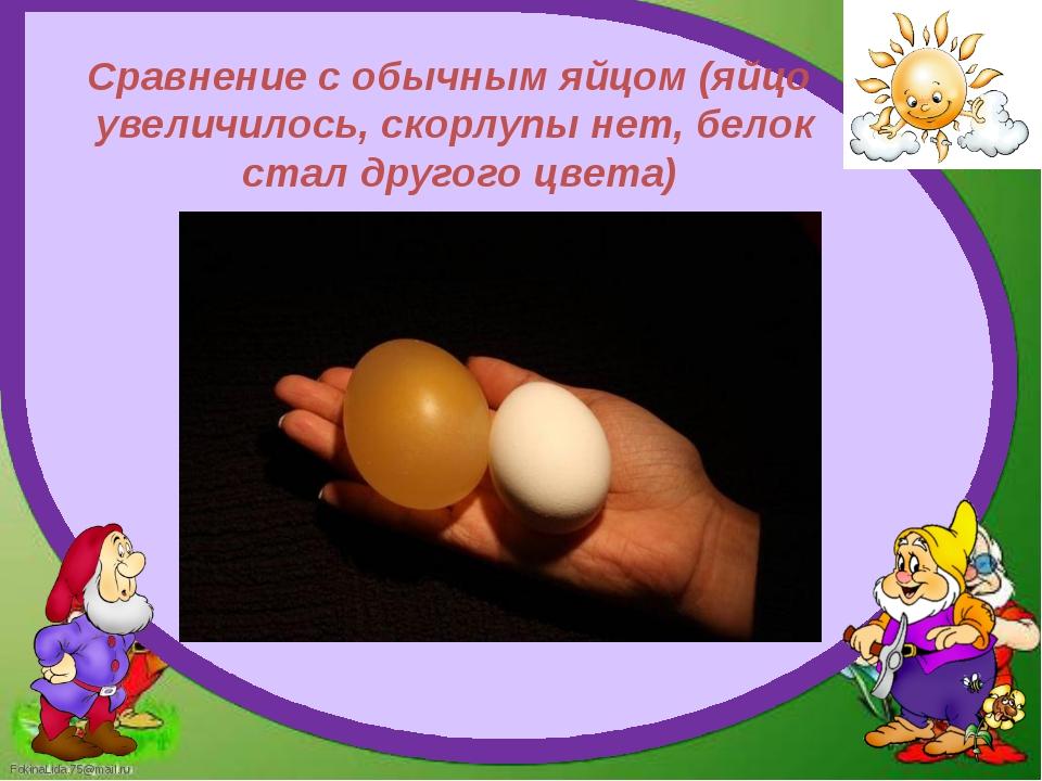 Сравнение с обычным яйцом (яйцо увеличилось, скорлупы нет, белок стал другого...