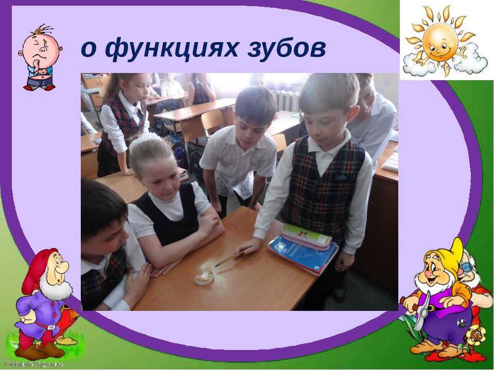 о функциях зубов FokinaLida.75@mail.ru