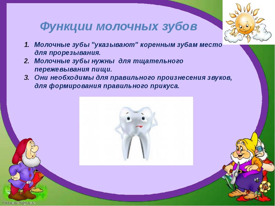 """Функции молочных зубов Молочные зубы """"указывают"""" коренным зубам место для про..."""
