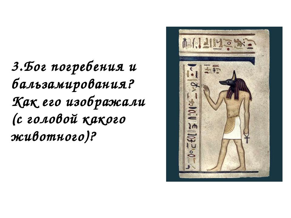 3.Бог погребения и бальзамирования? Как его изображали (с головой какого живо...