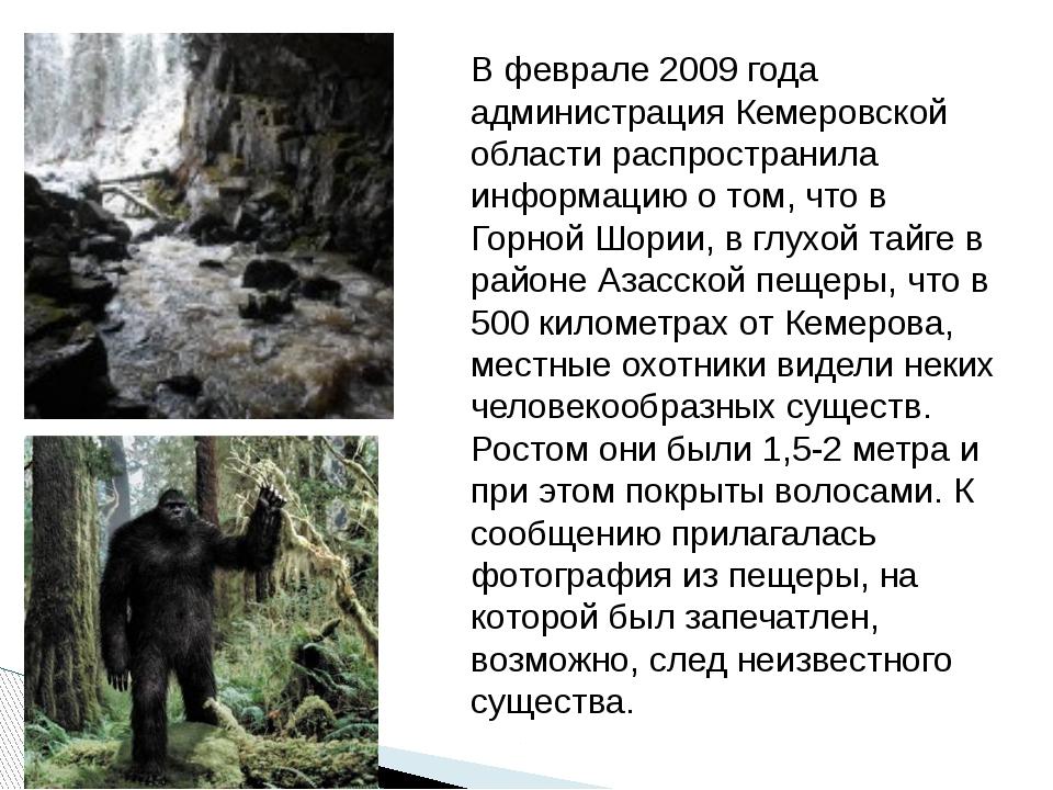 В феврале 2009 года администрация Кемеровской области распространила информац...