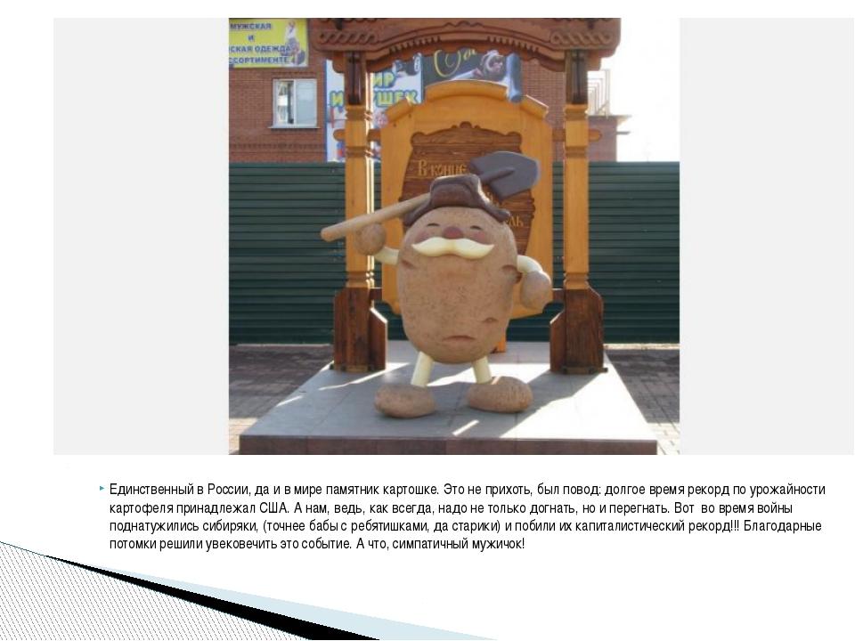 Единственный в России, да и в мире памятник картошке. Это не прихоть, был пов...
