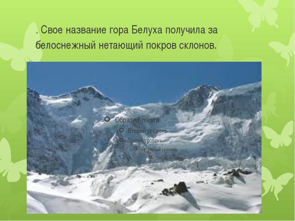 . Свое название гора Белуха получила за белоснежный нетающий покров склонов.