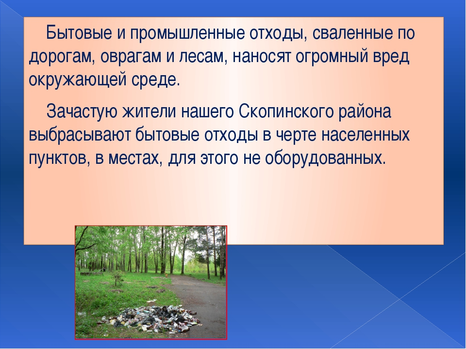 Бытовые и промышленные отходы, сваленные по дорогам, оврагам и лесам, нанося...