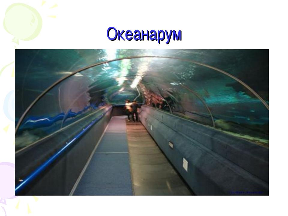 Океанарум
