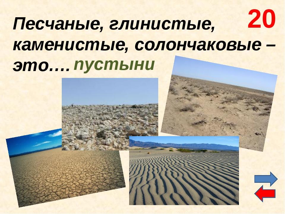 Песчаные, глинистые, каменистые, солончаковые – это…. пустыни 20