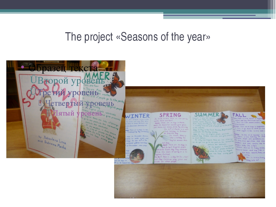 The project «Seasons of the year»