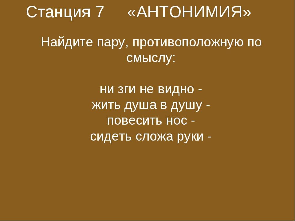 Станция 7 «АНТОНИМИЯ»  Найдите пару, противоположную по смыслу:  ни зги не...